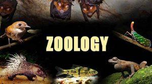 Zoology Class